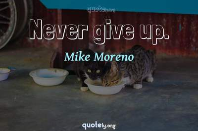 Photo Quote of Never give up.