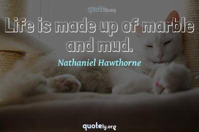 Photo Quote of Life is made up of marble and mud.