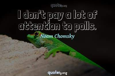 Photo Quote of I don't pay a lot of attention to polls.