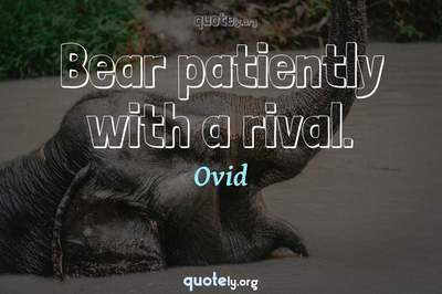 Photo Quote of Bear patiently with a rival.