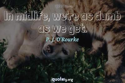 Photo Quote of In midlife, we're as dumb as we get.