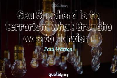 Photo Quote of Sea Shepherd is to terrorism what Groucho was to Marxism.