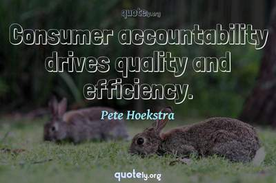 Photo Quote of Consumer accountability drives quality and efficiency.