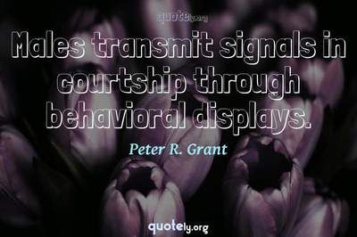 Photo Quote of Males transmit signals in courtship through behavioral displays.