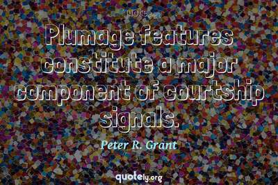 Photo Quote of Plumage features constitute a major component of courtship signals.