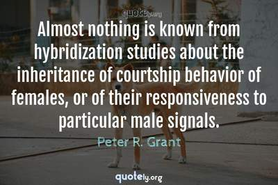 Photo Quote of Almost nothing is known from hybridization studies about the inheritance of courtship behavior of females, or of their responsiveness to particular male signals.