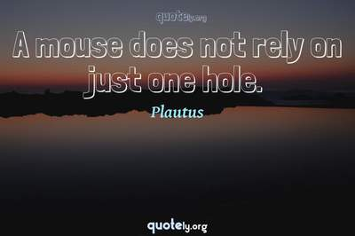 Photo Quote of A mouse does not rely on just one hole.