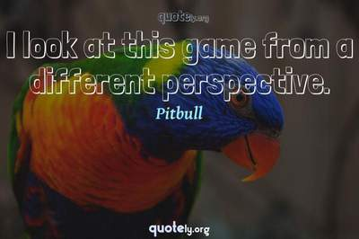 Photo Quote of I look at this game from a different perspective.