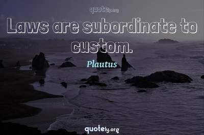 Photo Quote of Laws are subordinate to custom.
