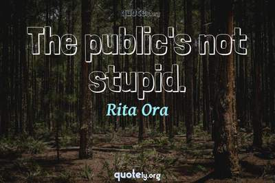 Photo Quote of The public's not stupid.
