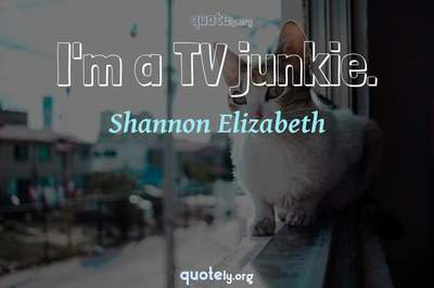Photo Quote of I'm a TV junkie.