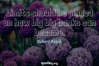 Photo Quote of Limits should be placed on how big big banks can become.