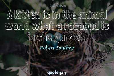 Photo Quote of A kitten is in the animal world what a rosebud is in the garden.