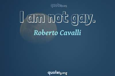 Photo Quote of I am not gay.