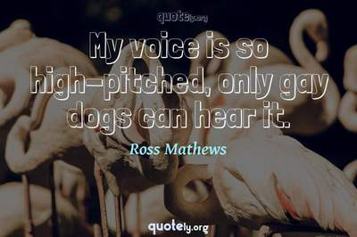 Photo Quote of My voice is so high-pitched, only gay dogs can hear it.