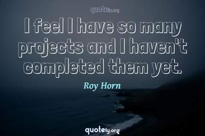 Photo Quote of I feel I have so many projects and I haven't completed them yet.