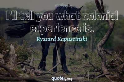 Photo Quote of I'll tell you what colonial experience is.
