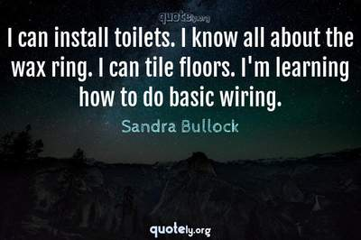Photo Quote of I can install toilets. I know all about the wax ring. I can tile floors. I'm learning how to do basic wiring.