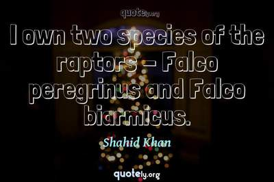 Photo Quote of I own two species of the raptors - Falco peregrinus and Falco biarmicus.