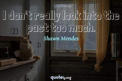 Photo Quote of I don't really look into the past too much.