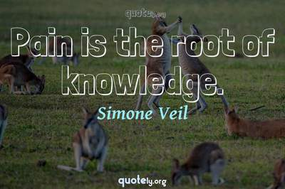 Photo Quote of Pain is the root of knowledge.