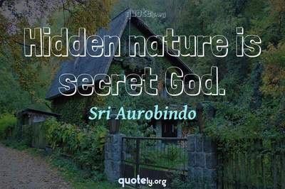 Photo Quote of Hidden nature is secret God.