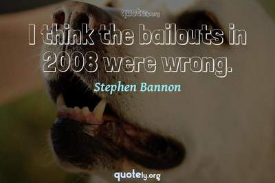Photo Quote of I think the bailouts in 2008 were wrong.