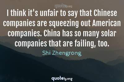 Photo Quote of I think it's unfair to say that Chinese companies are squeezing out American companies. China has so many solar companies that are failing, too.