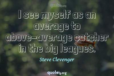 Photo Quote of I see myself as an average to above-average catcher in the big leagues.