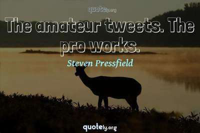 Photo Quote of The amateur tweets. The pro works.