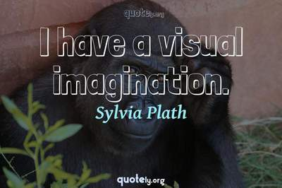 Photo Quote of I have a visual imagination.