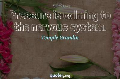 Photo Quote of Pressure is calming to the nervous system.