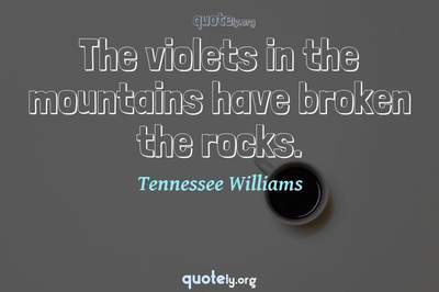 Photo Quote of The violets in the mountains have broken the rocks.