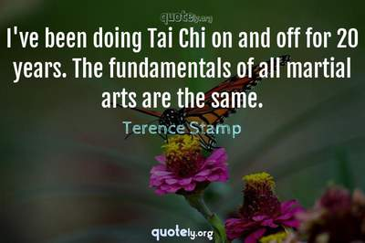 Photo Quote of I've been doing Tai Chi on and off for 20 years. The fundamentals of all martial arts are the same.