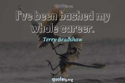 Photo Quote of I've been bashed my whole career.