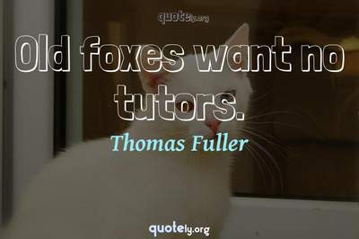 Photo Quote of Old foxes want no tutors.