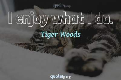 Photo Quote of I enjoy what I do.