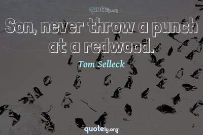 Photo Quote of Son, never throw a punch at a redwood.