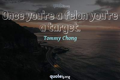 Photo Quote of Once you're a felon you're a target.