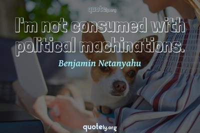 Photo Quote of I'm not consumed with political machinations.