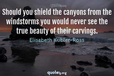 Photo Quote of Should you shield the canyons from the windstorms you would never see the true beauty of their carvings.