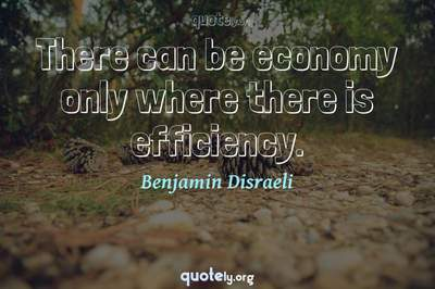 Photo Quote of There can be economy only where there is efficiency.