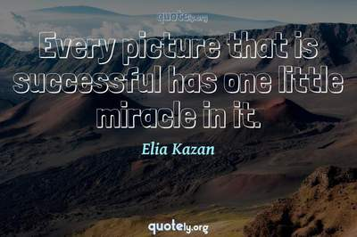 Photo Quote of Every picture that is successful has one little miracle in it.