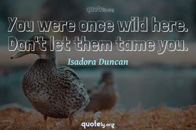 Photo Quote of You were once wild here. Don't let them tame you.