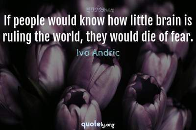 Photo Quote of If people would know how little brain is ruling the world, they would die of fear.