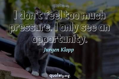 Photo Quote of I don't feel too much pressure. I only see an opportunity.