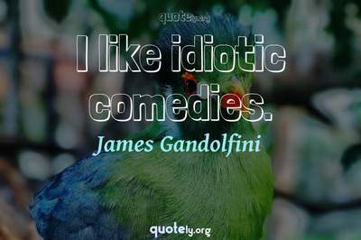 Photo Quote of I like idiotic comedies.