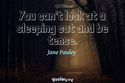 Photo Quote of You can't look at a sleeping cat and be tense.