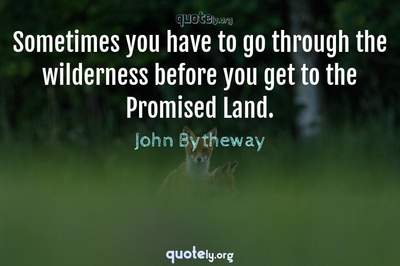 Photo Quote of Sometimes you have to go through the wilderness before you get to the Promised Land.