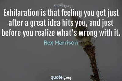 Photo Quote of Exhilaration is that feeling you get just after a great idea hits you, and just before you realize what's wrong with it.